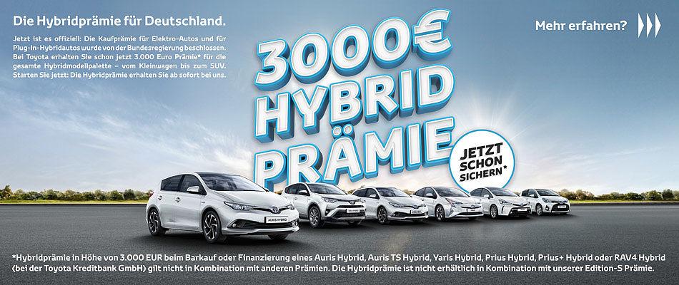 Hybrid-Prämie