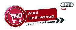 Audi.SteinGruppe - Shop