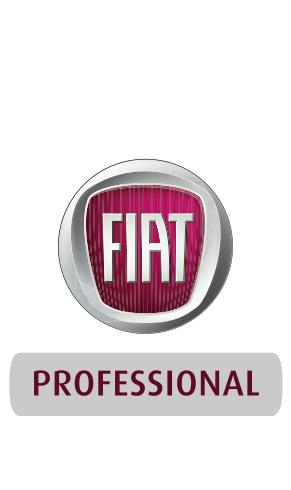 Baschinger Fiat Professional