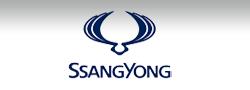 SsangYong Wetzlar